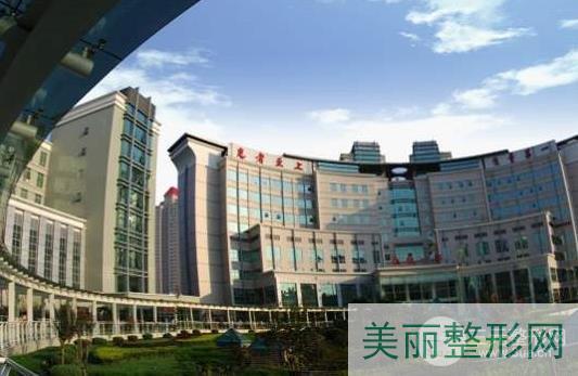 第四军医大学西京医院植发专家点评