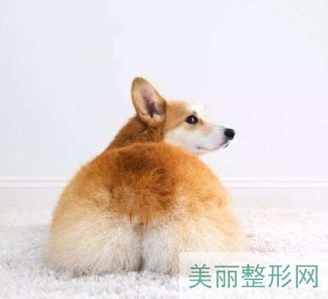 北京东方和谐自体脂肪丰臀