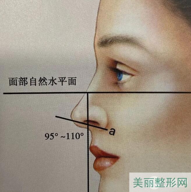 面部水平线