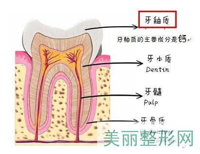 全瓷牙贴面贴的位置