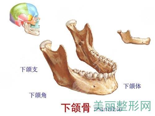 下颌角磨骨术恢复